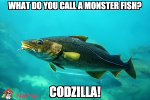 What do you call a monster fish? Codzilla!