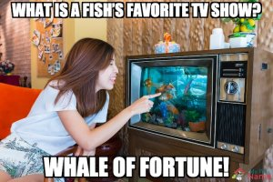 What is a fish's favorite TV show? Whale of Fortune!