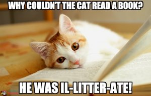 Why couldn't the cat read a book? He was il-litter-ate!