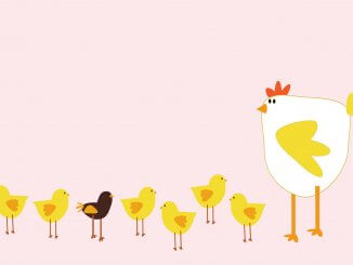 Chicken Puns Feature