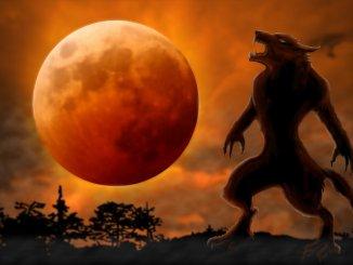 Werewolf Names Feature