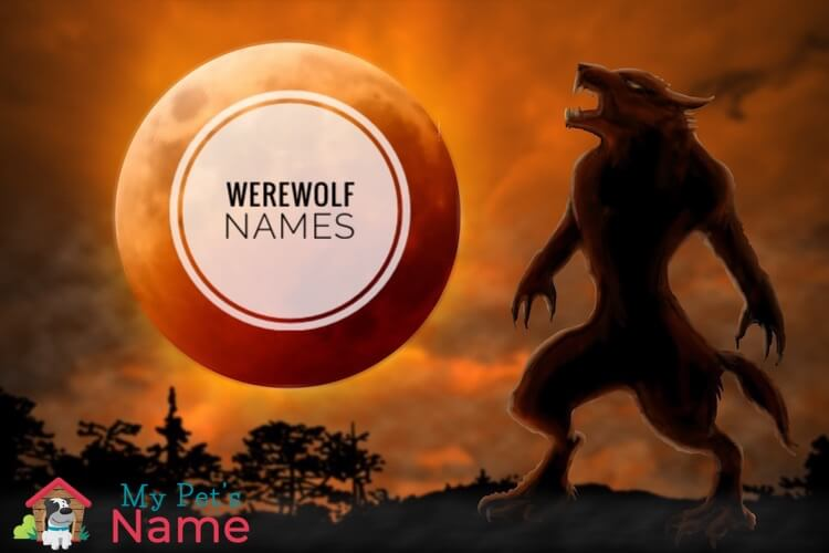 Werewolf Names: 105+ Supernatural, Mysterious & Mythical