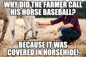 Farmer and Horse Joke