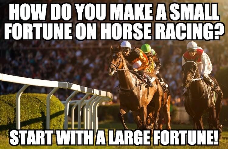 Fast Horse Joke