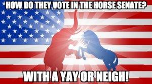 Horse Vote Meme