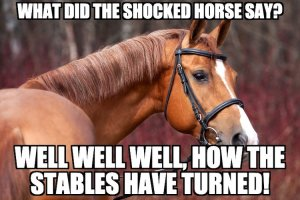 Shocked Horse Pun