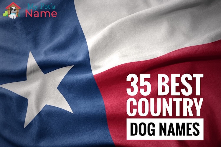 Country Dog Names