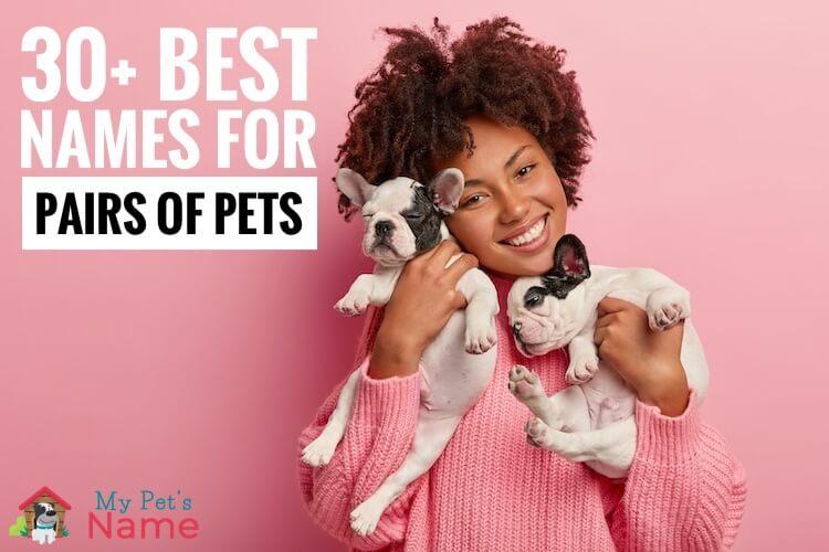 Duo Pet Names