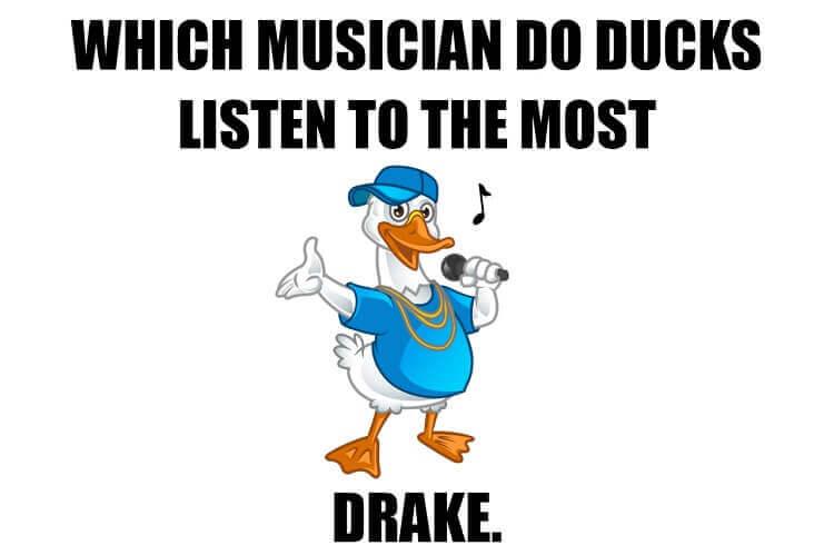 Duck Rapper Drake Meme