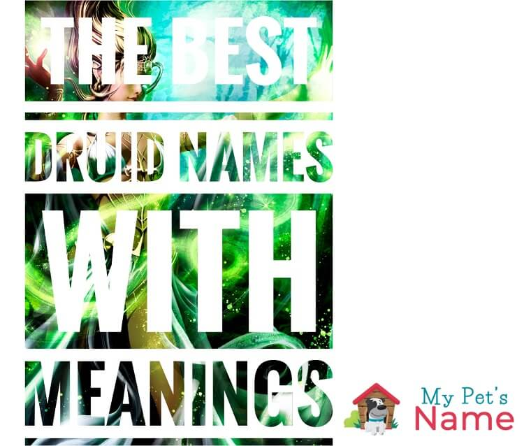 Best Druid Names with Meanings