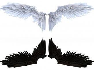 Aasimar Angel Wings Light and Shadow
