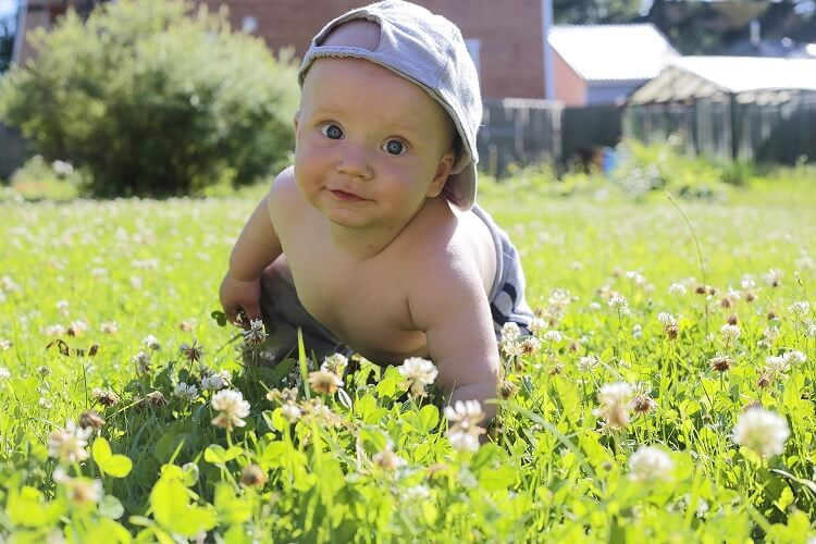 Baby in Hat Crawling on Grass