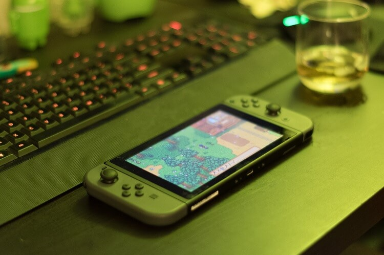 Stardew Valley Nintendo Switch