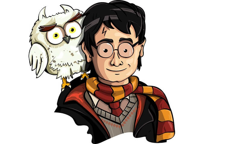 Harry Potter Hedwig Fictional Wizard