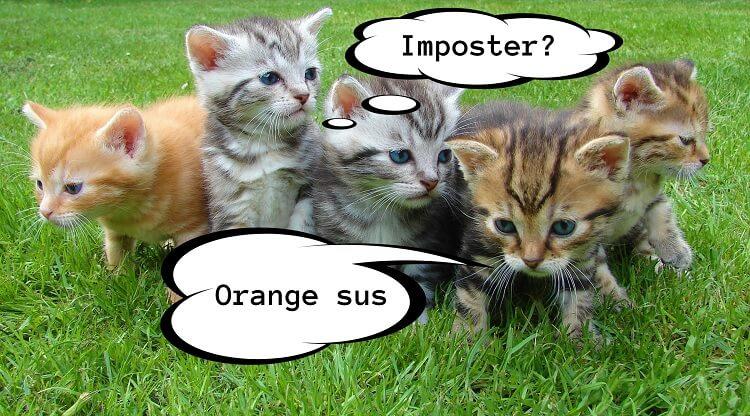 Cute Kittens Playing Among Us